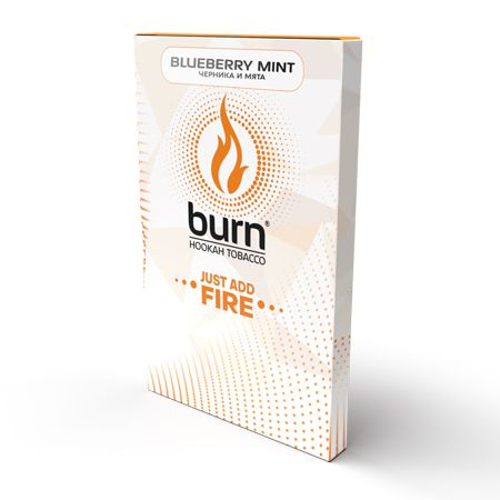 Берн (Burn) 100 г (Blueberry Mint (Черника Мята))